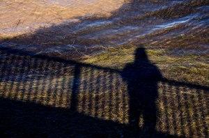 Silhouette pahre de Shippagan DSC_0230 (4)